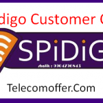 Spidigo Customer Care Number, Toll-Free Number, Email ID